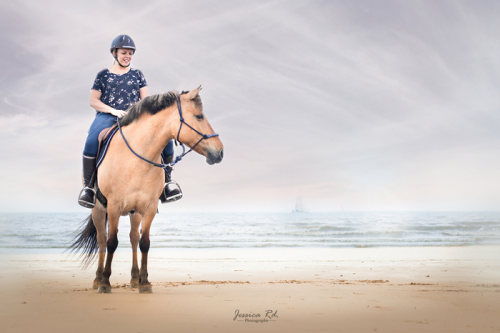 Photographie cheval plage du nord 2