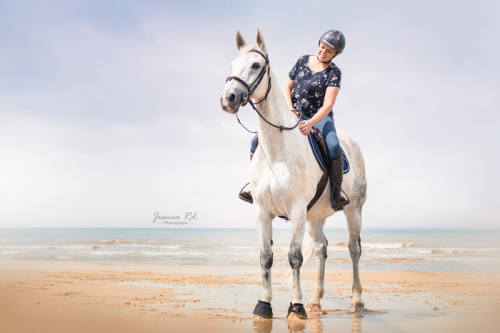 Photographie cheval plage du nord5 1